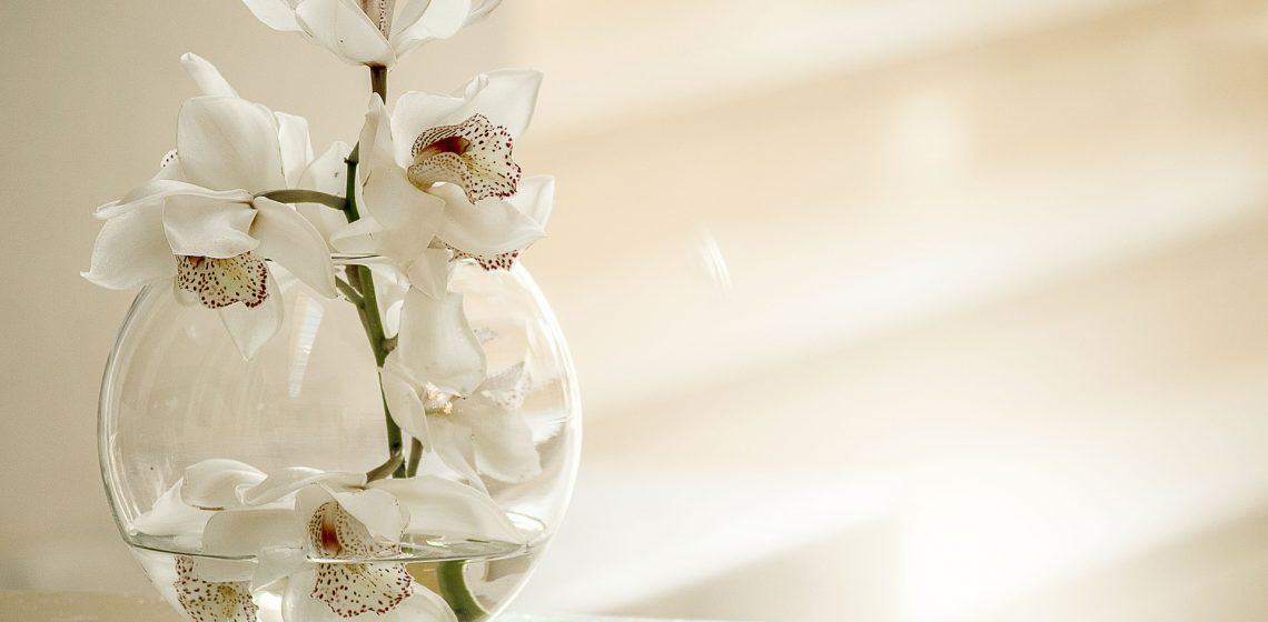 Vase Hausmittelchen Blog Tipps Hacks