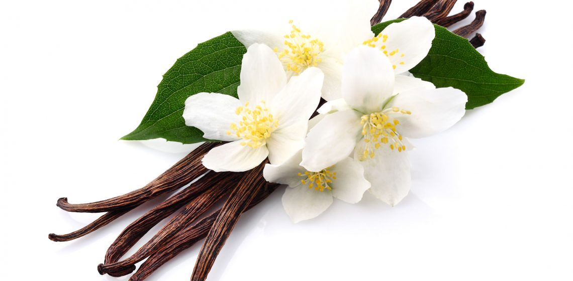 Vanille Aroma Lebensmittel Food Hack Tipp Haushalt Blog Hausmittelchen