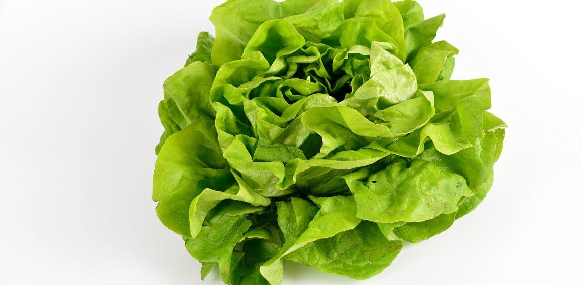 Salat Lebensmittel Food Hack Tipp Haushalt Blog Hausmittelchen